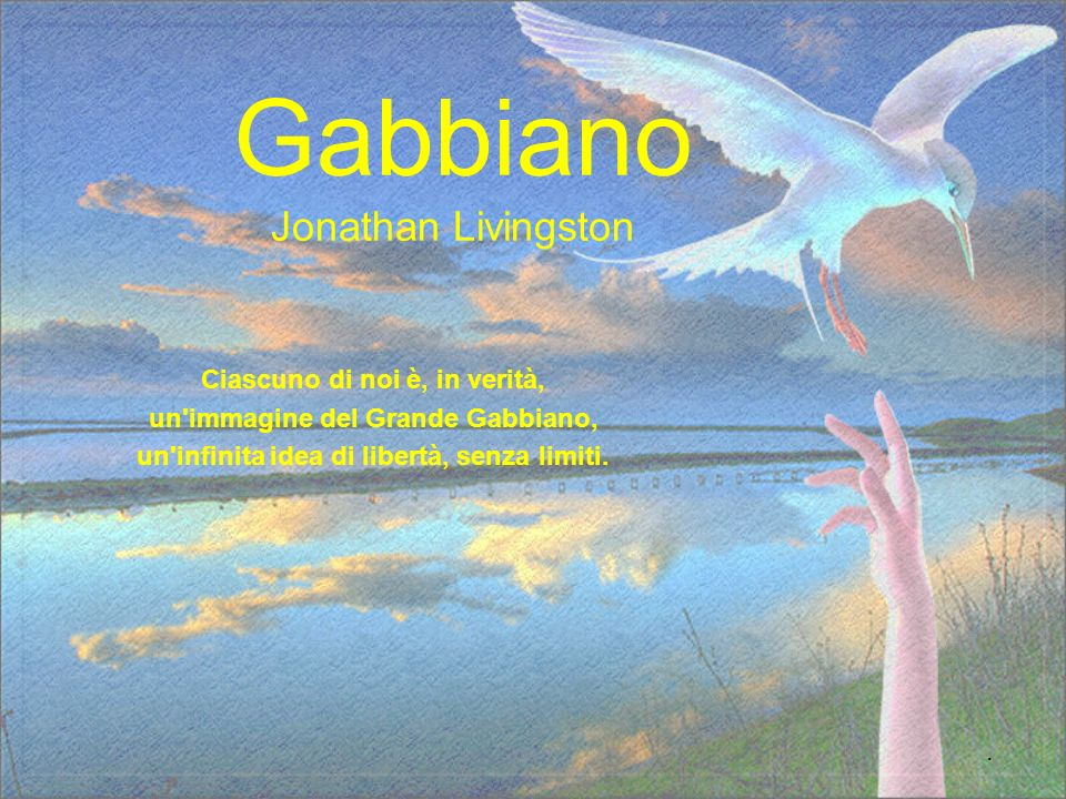 Gabbiano Jonathan Livingston