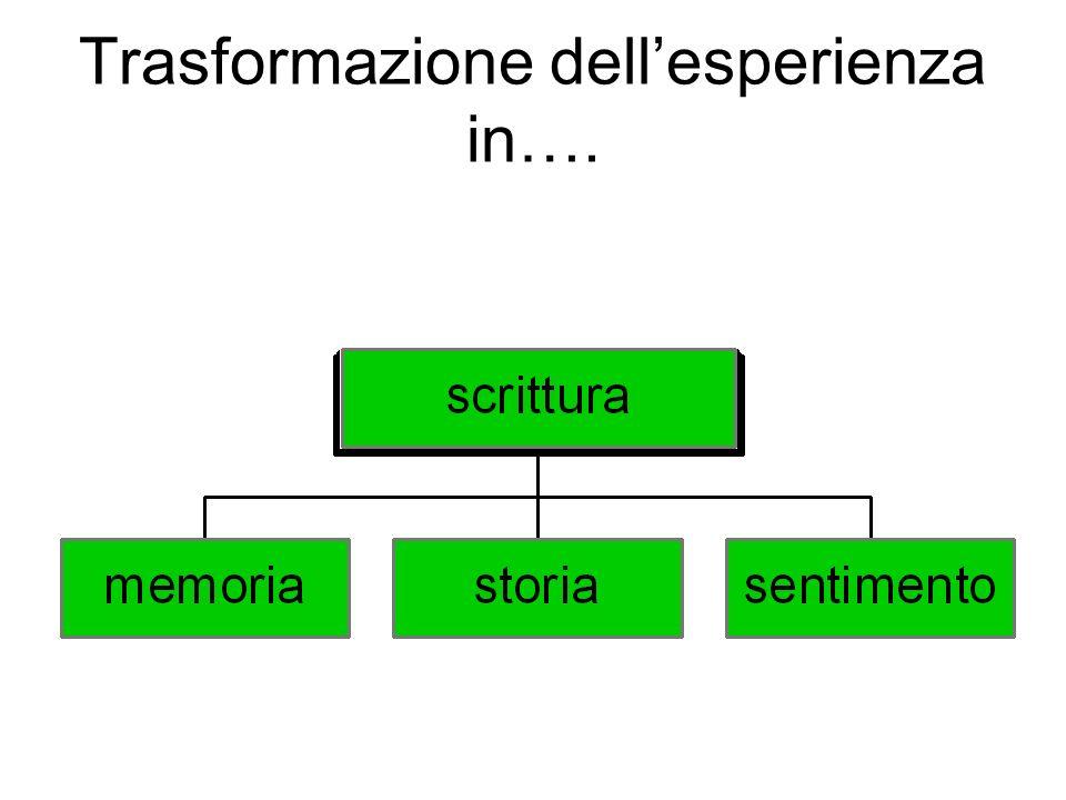 Trasformazione dell'esperienza in….