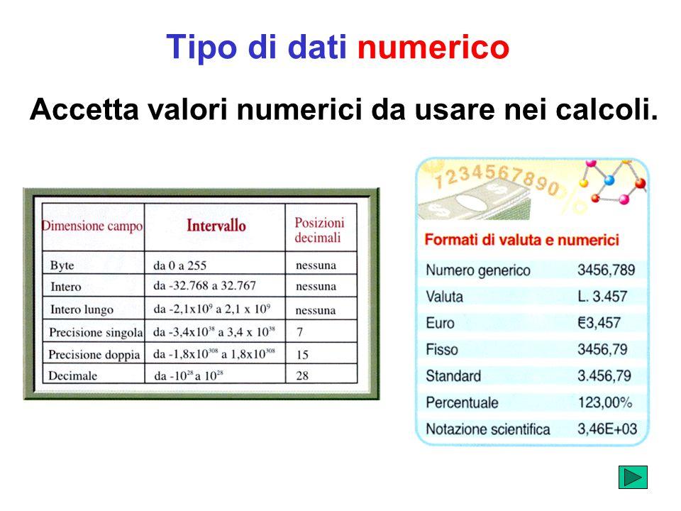 Tipo di dati numerico Accetta valori numerici da usare nei calcoli.