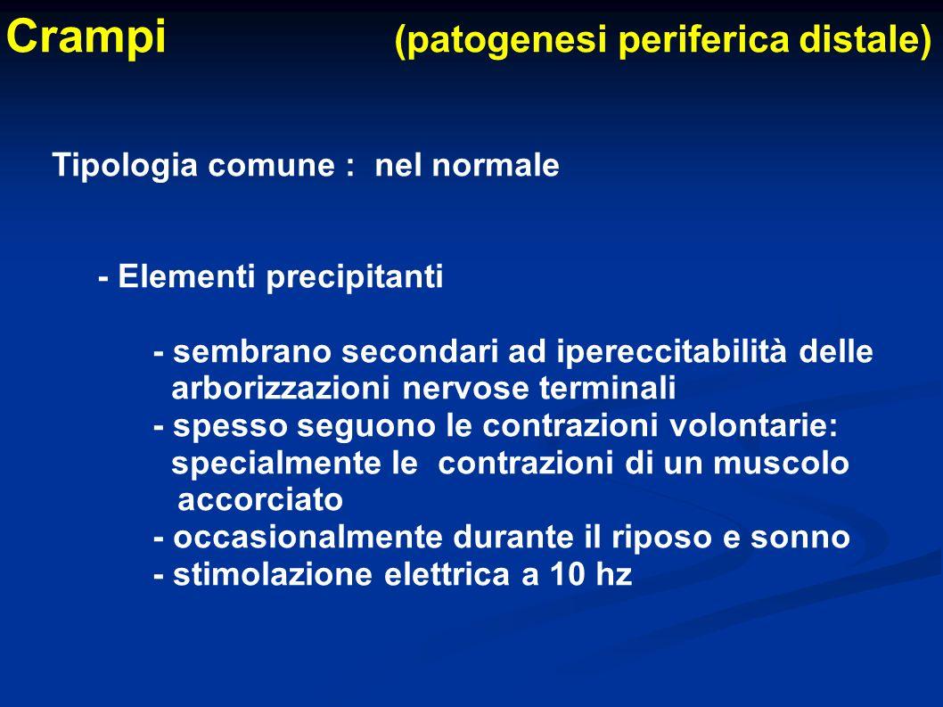 Crampi (patogenesi periferica distale)