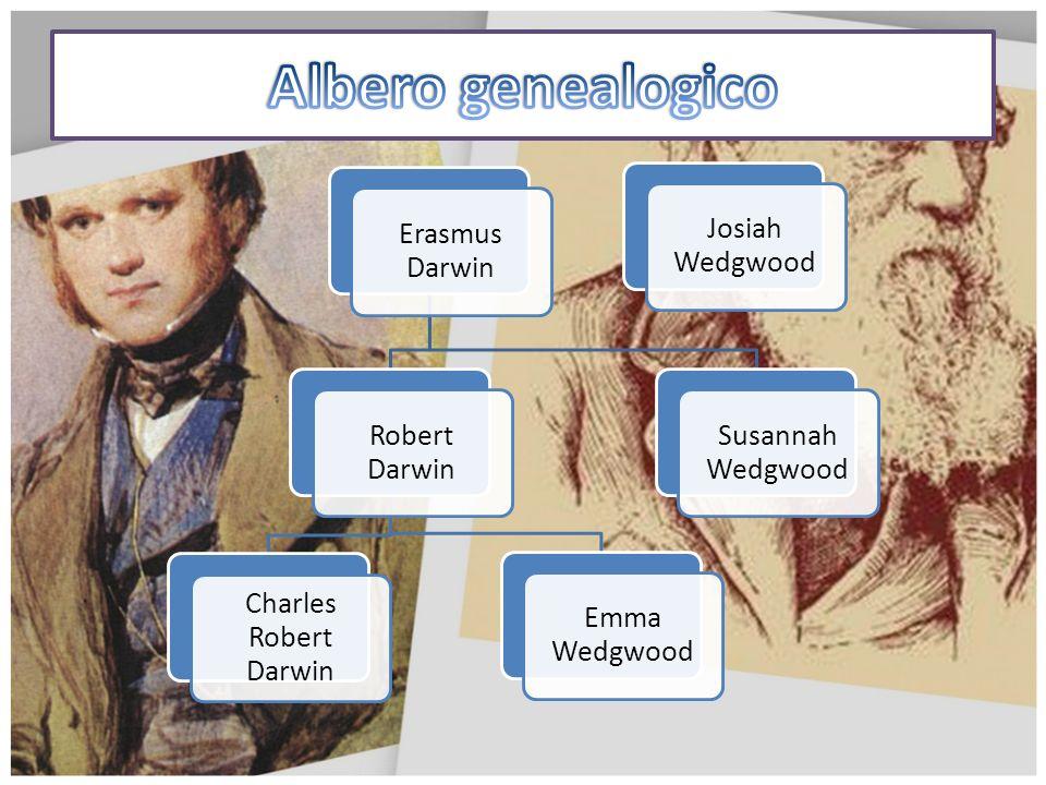 Albero genealogico Erasmus Darwin Robert Darwin Charles Robert Darwin