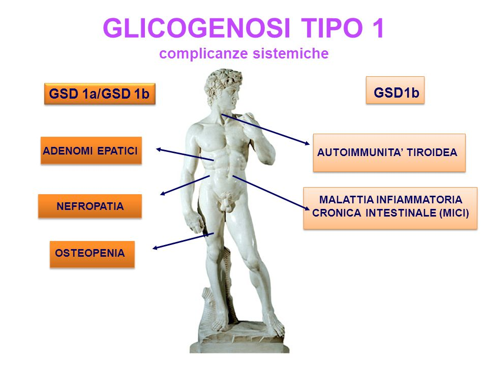 GLICOGENOSI TIPO 1 complicanze sistemiche GSD 1a/GSD 1b GSD1b