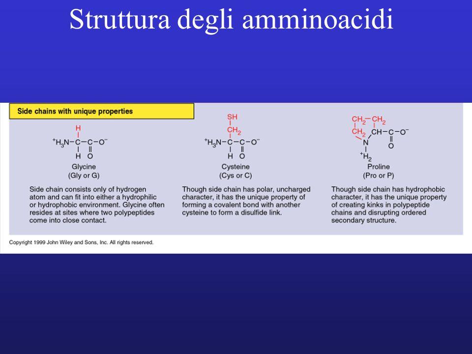 Struttura degli amminoacidi