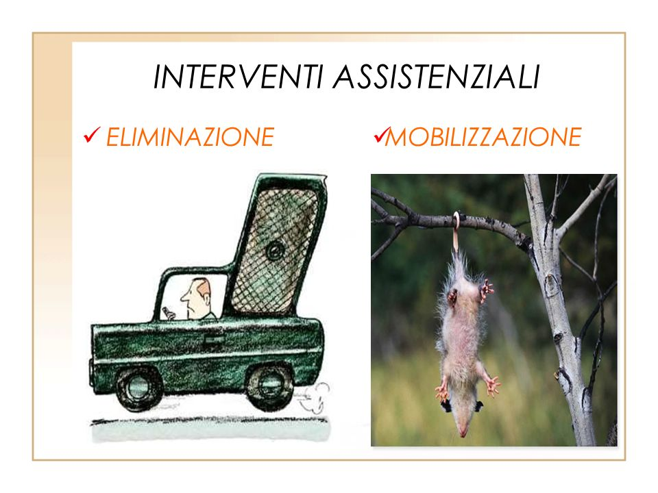 INTERVENTI ASSISTENZIALI