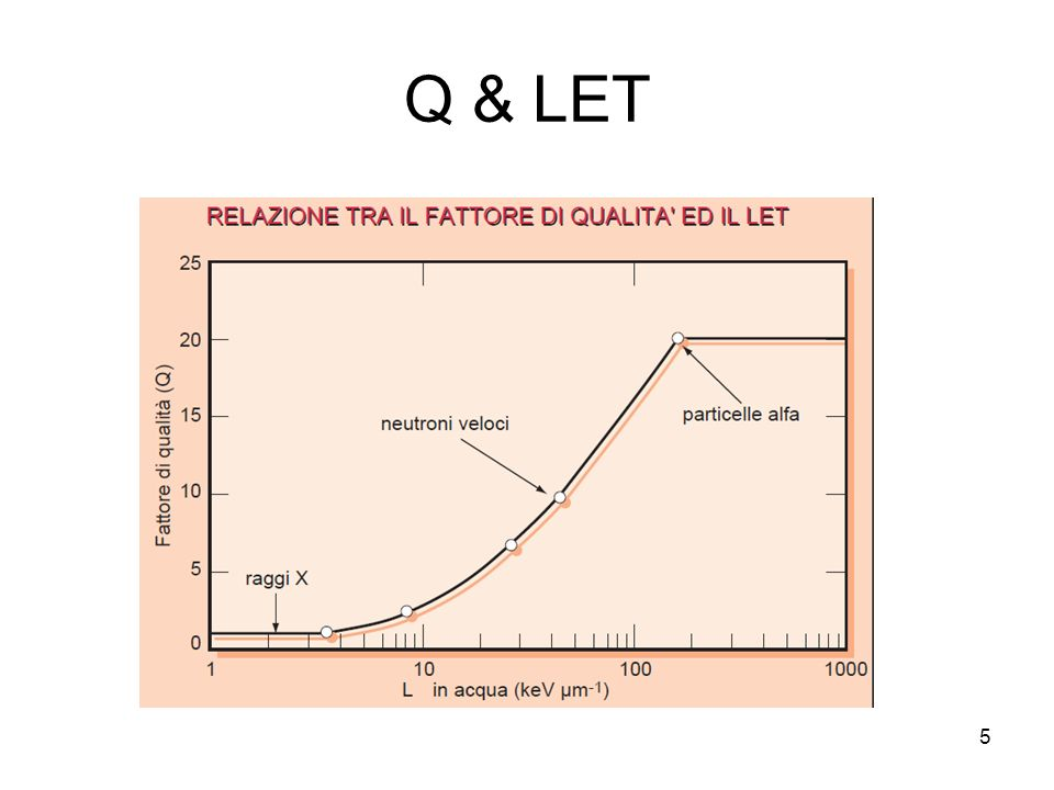 Q & LET