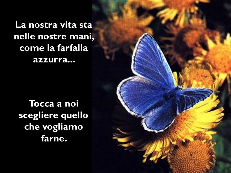 La nostra vita sta nelle nostre mani, come la farfalla azzurra...