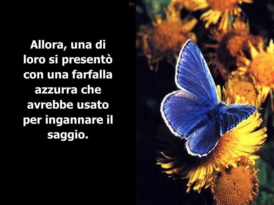 Ria Slides Allora, una di loro si presentò con una farfalla azzurra che avrebbe usato per ingannare il saggio.