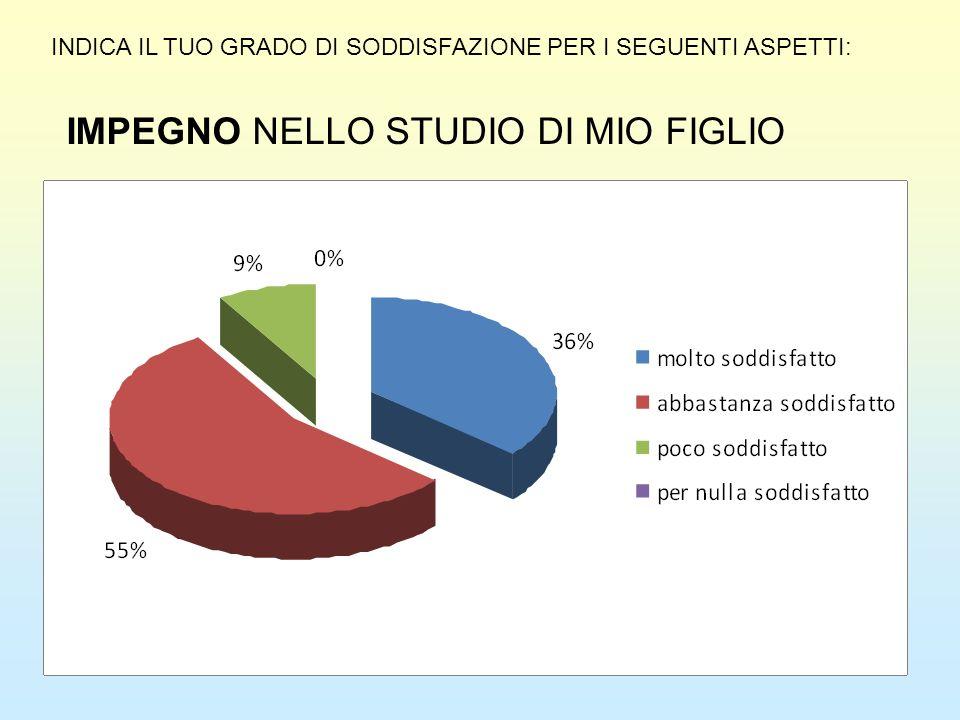 IMPEGNO NELLO STUDIO DI MIO FIGLIO