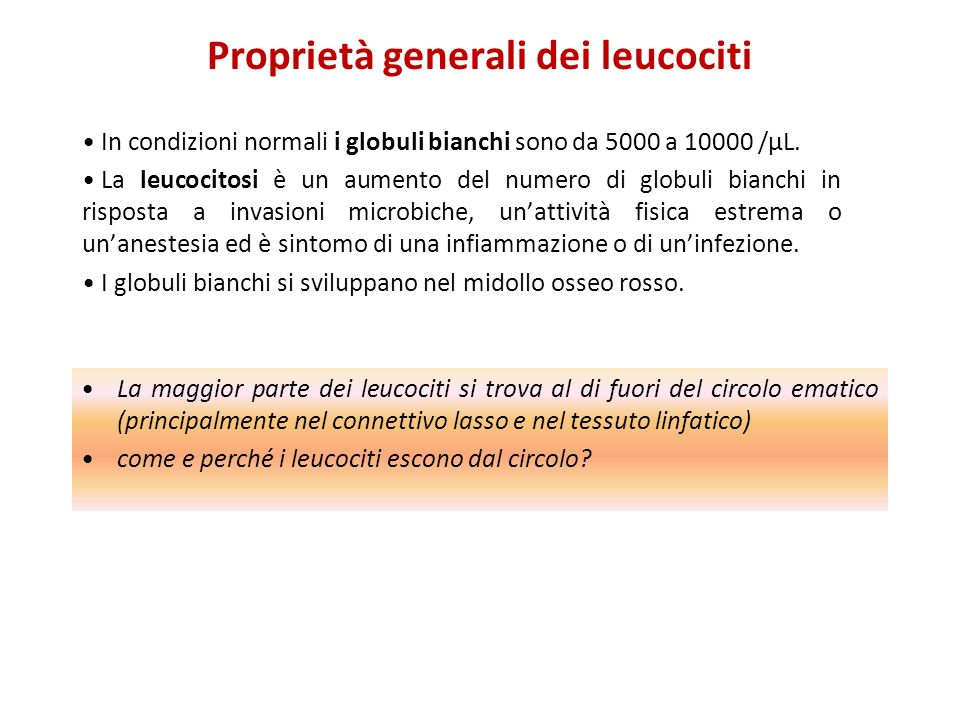 Proprietà generali dei leucociti
