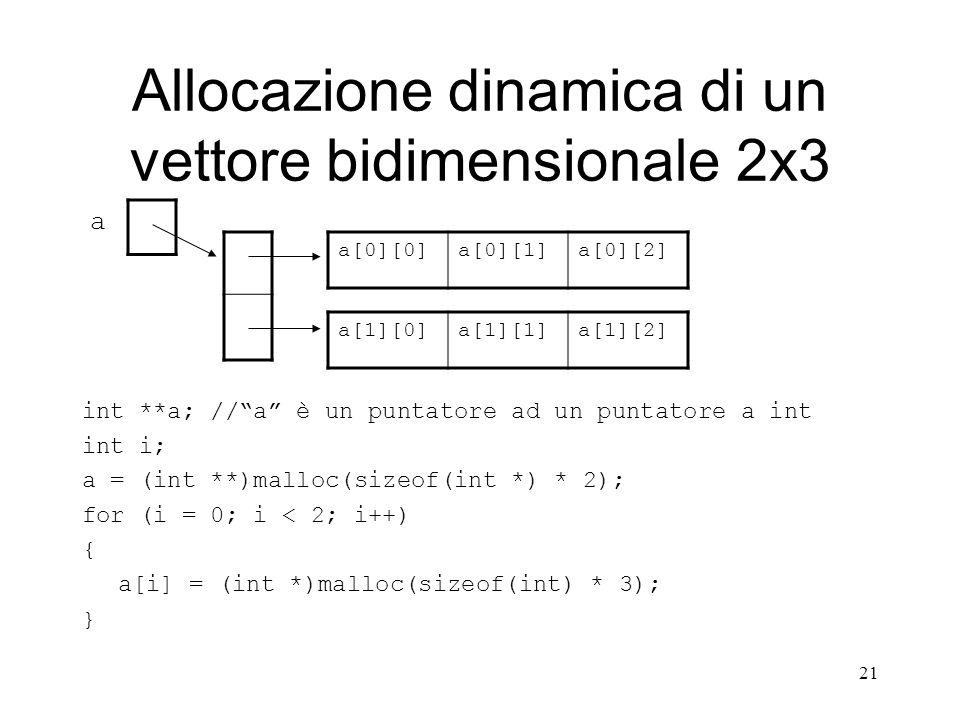Allocazione dinamica di un vettore bidimensionale 2x3