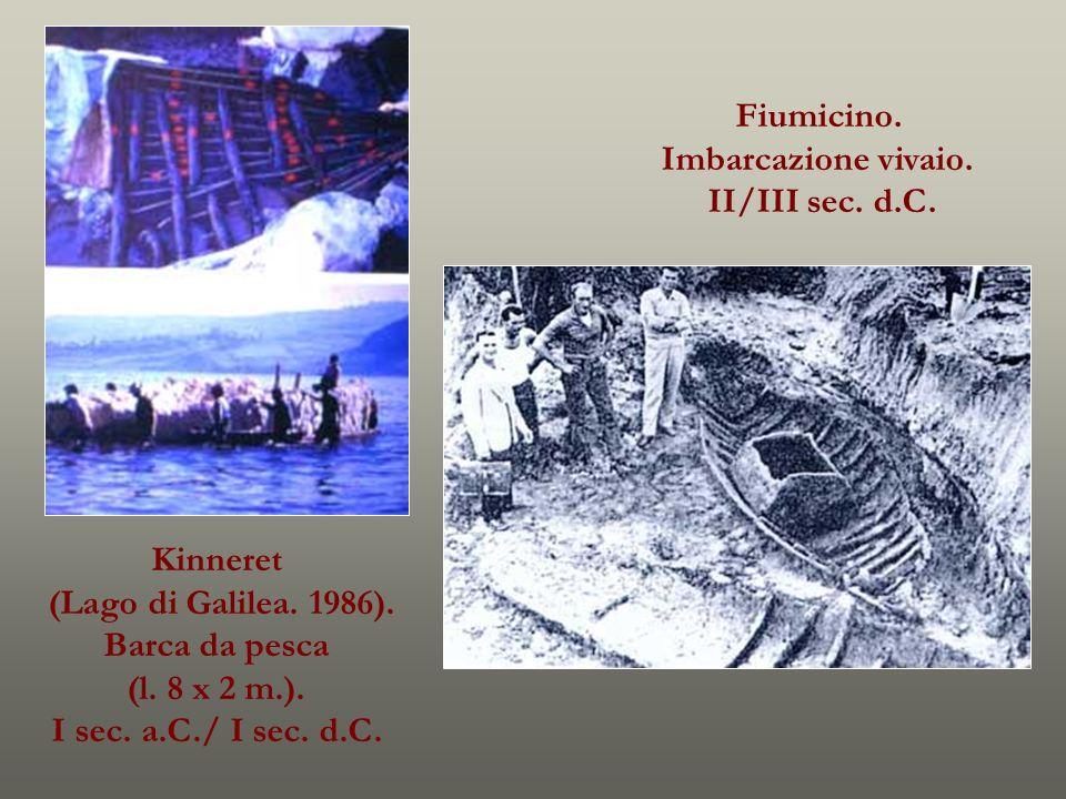 Fiumicino. Imbarcazione vivaio. II/III sec. d.C. Kinneret. (Lago di Galilea. 1986). Barca da pesca.