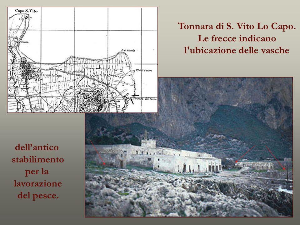Tonnara di S. Vito Lo Capo. l ubicazione delle vasche