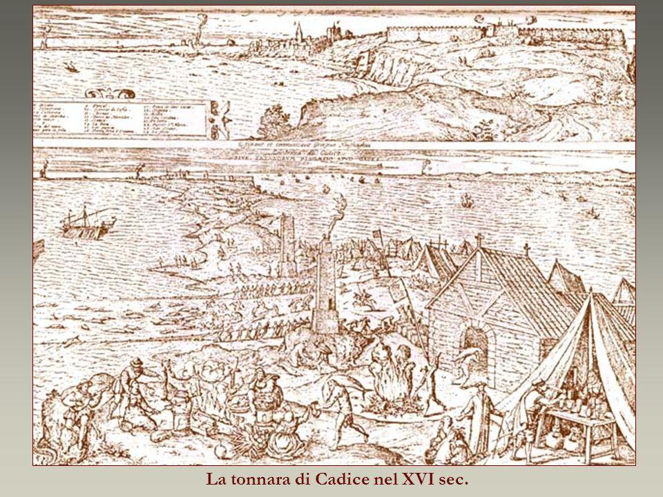 La tonnara di Cadice nel XVI sec.