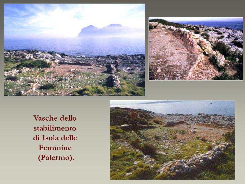 Vasche dello stabilimento di Isola delle Femmine (Palermo).