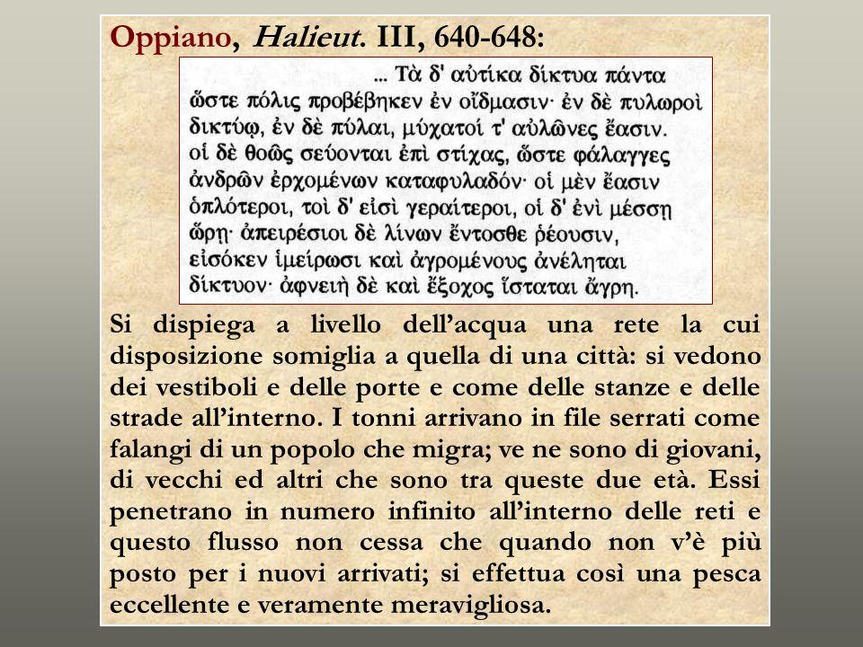 Oppiano, Halieut. III, 640-648: