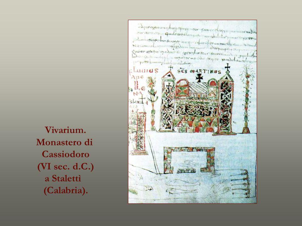 Vivarium. Monastero di Cassiodoro (VI sec. d.C.) a Stalettì (Calabria).