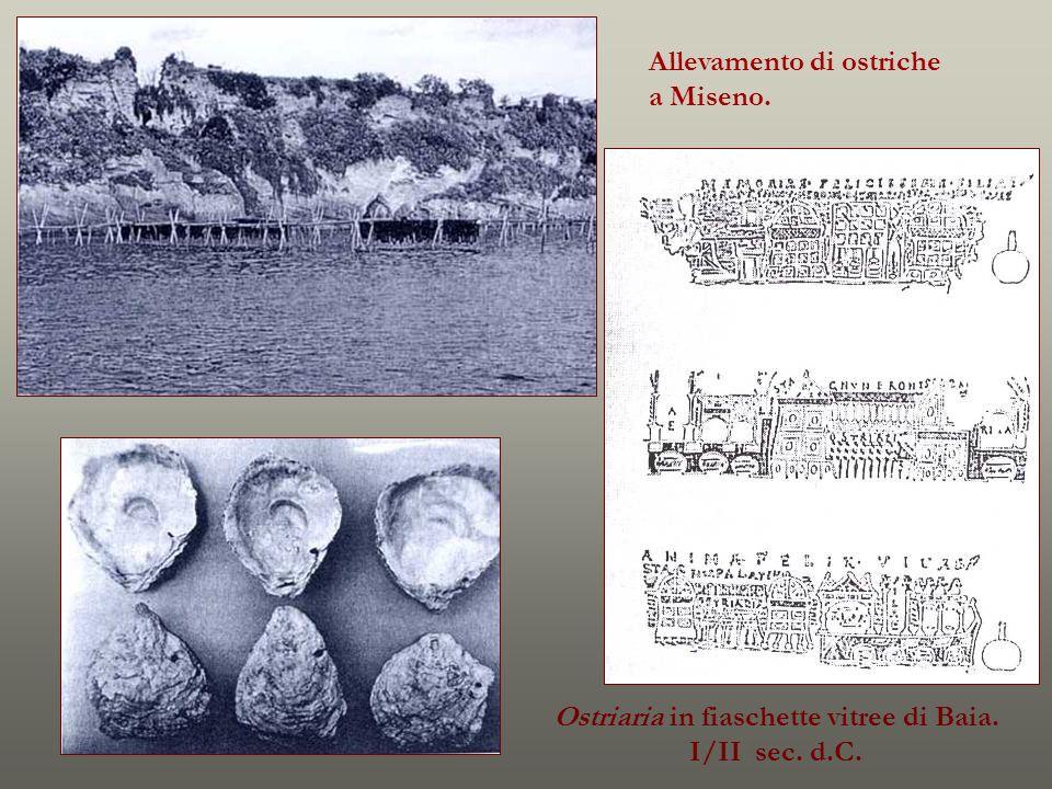 Ostriaria in fiaschette vitree di Baia.