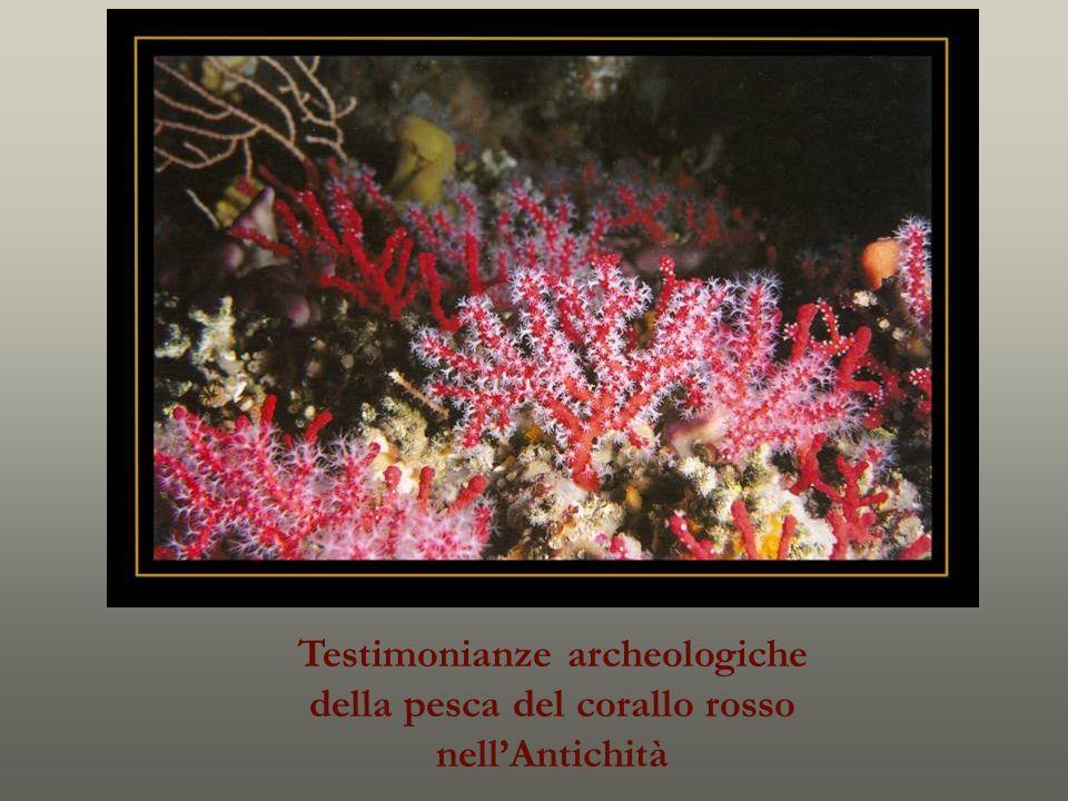 Testimonianze archeologiche della pesca del corallo rosso