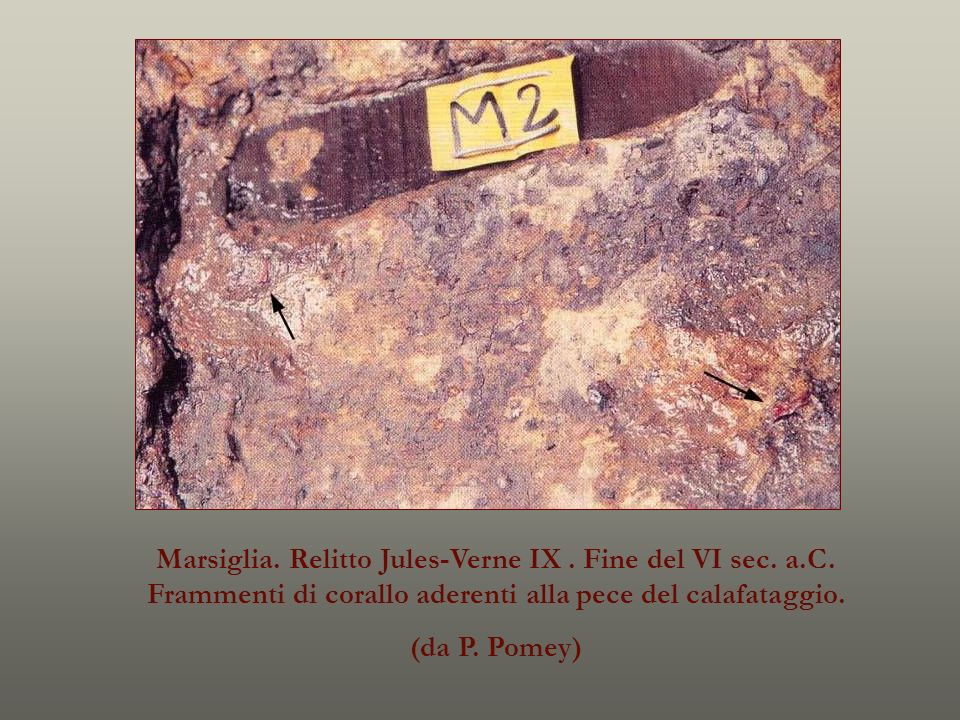 Marsiglia. Relitto Jules-Verne IX. Fine del VI sec. a. C