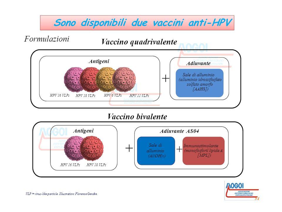 + + + Sono disponibili due vaccini anti-HPV Formulazioni
