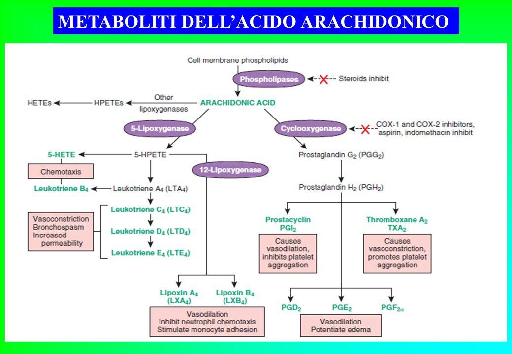 fans farmaci antinfiammatori non steroidei