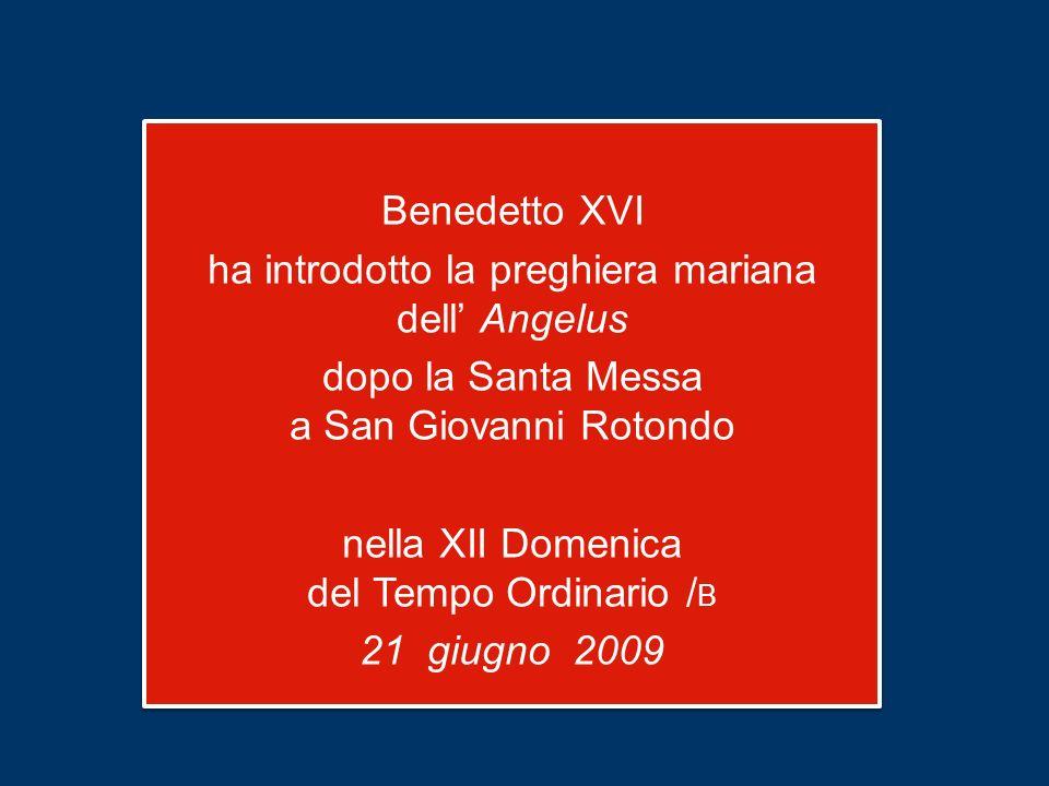 Benedetto XVI ha introdotto la preghiera mariana dell' Angelus dopo la Santa Messa a San Giovanni Rotondo nella XII Domenica del Tempo Ordinario /B 21 giugno 2009