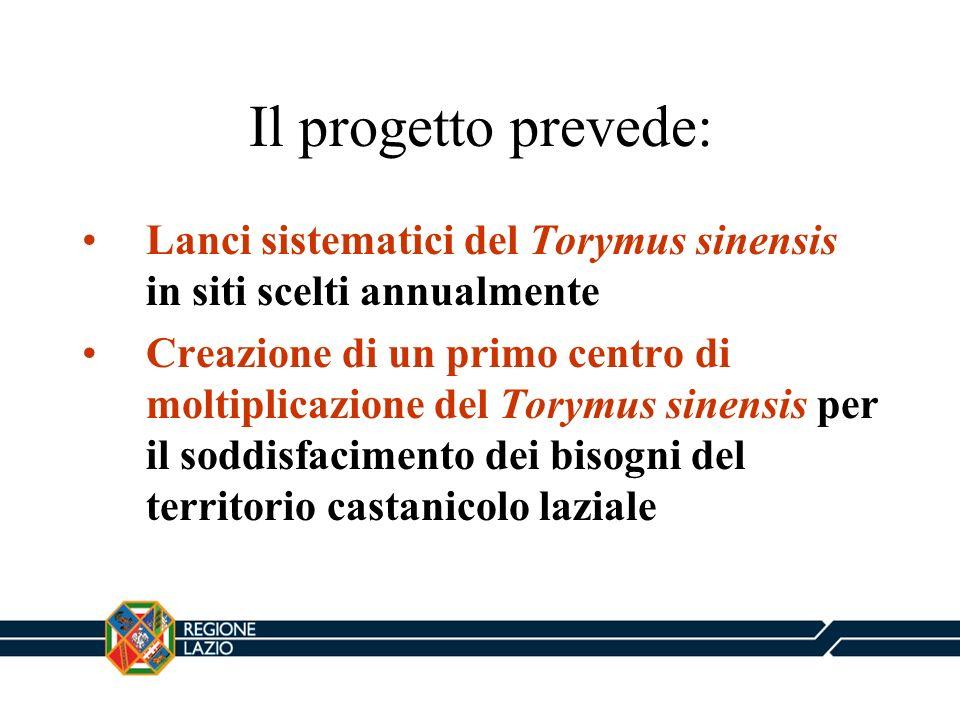 Il progetto prevede: Lanci sistematici del Torymus sinensis in siti scelti annualmente.