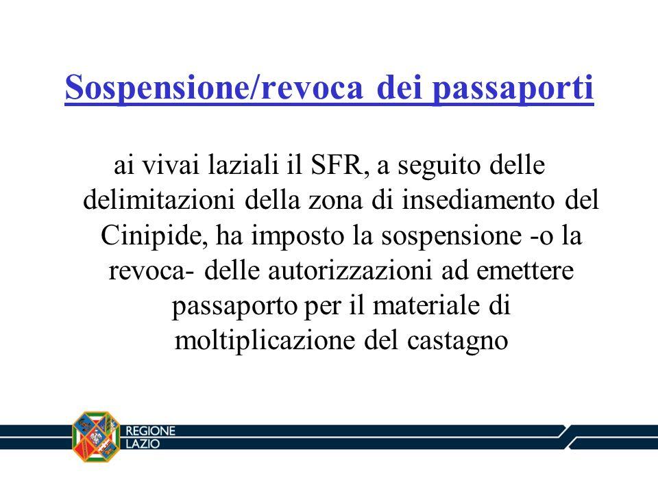 Sospensione/revoca dei passaporti