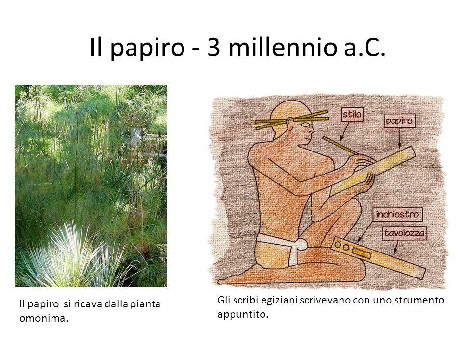 Il papiro - 3 millennio a.C.