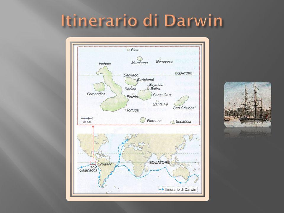 Itinerario di Darwin