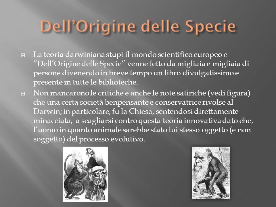 Dell'Origine delle Specie