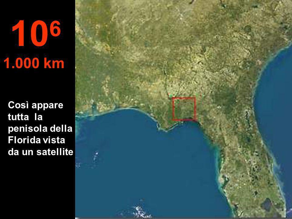 106 1.000 km Così appare tutta la penisola della Florida vista da un satellite