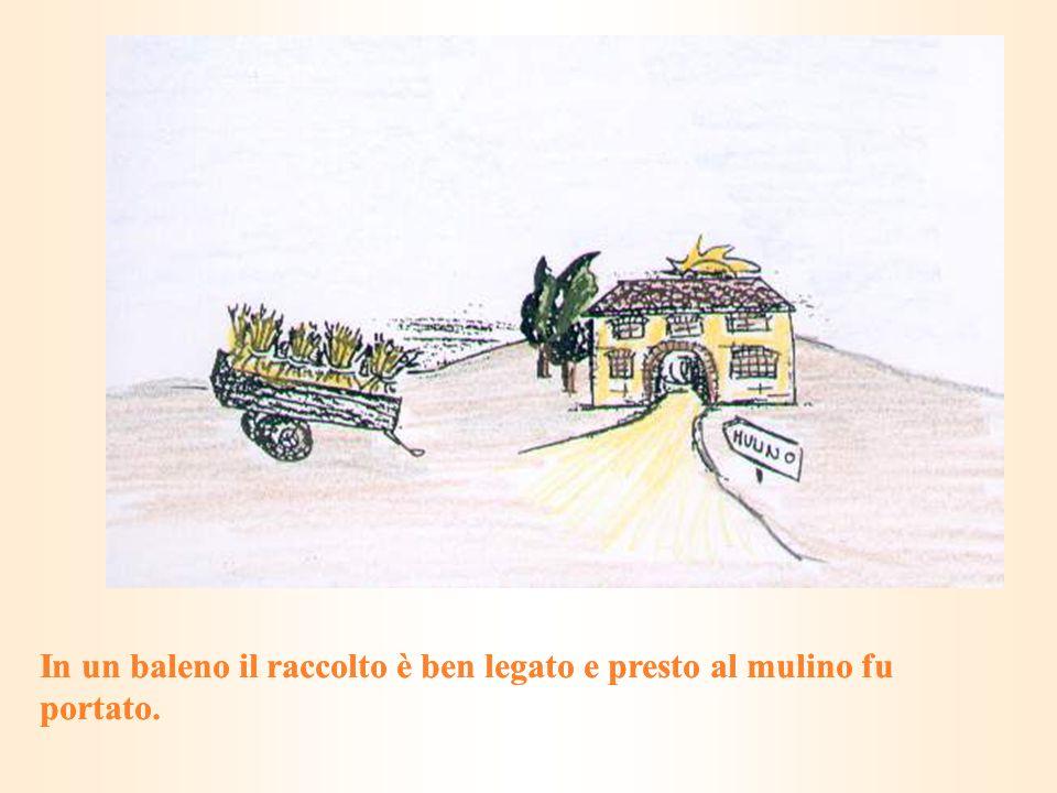 In un baleno il raccolto è ben legato e presto al mulino fu portato.