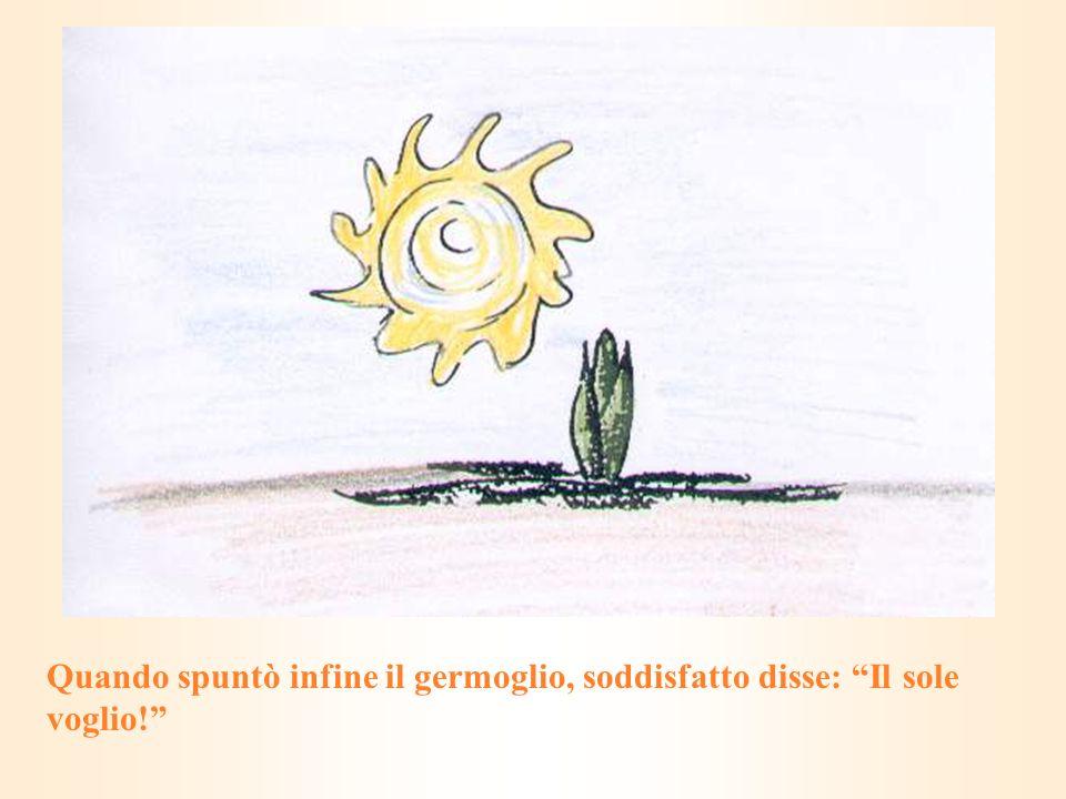 Quando spuntò infine il germoglio, soddisfatto disse: Il sole voglio