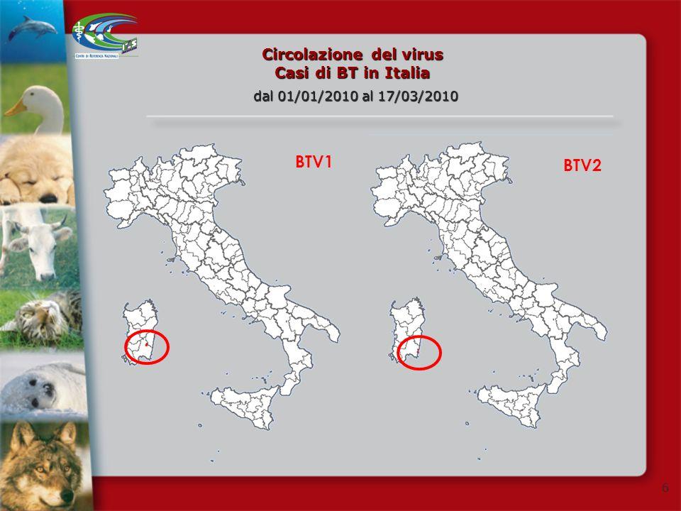 Circolazione del virus Casi di BT in Italia
