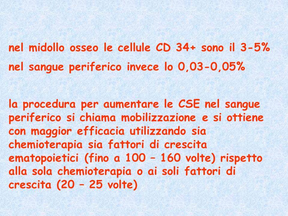 nel midollo osseo le cellule CD 34+ sono il 3-5%