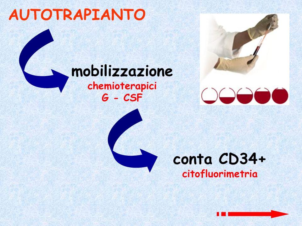 AUTOTRAPIANTO mobilizzazione conta CD34+
