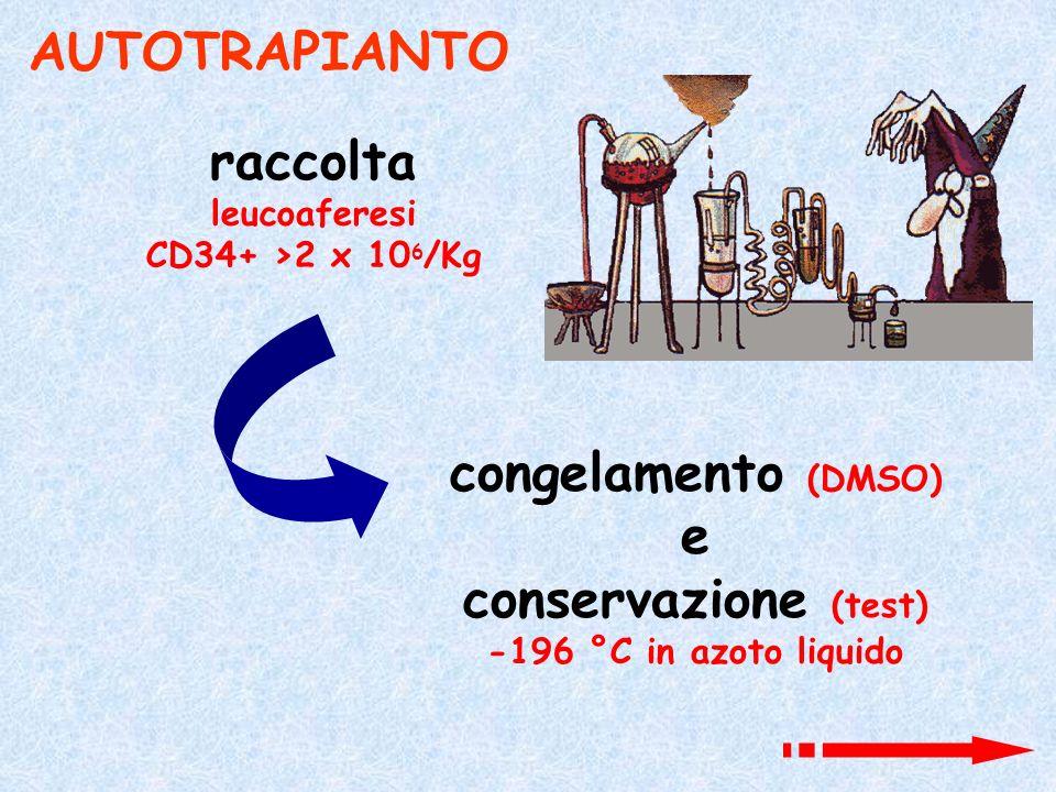 AUTOTRAPIANTO raccolta congelamento (DMSO) e conservazione (test)