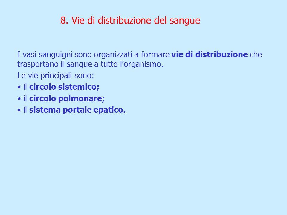 8. Vie di distribuzione del sangue