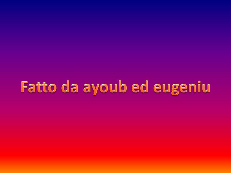 Fatto da ayoub ed eugeniu