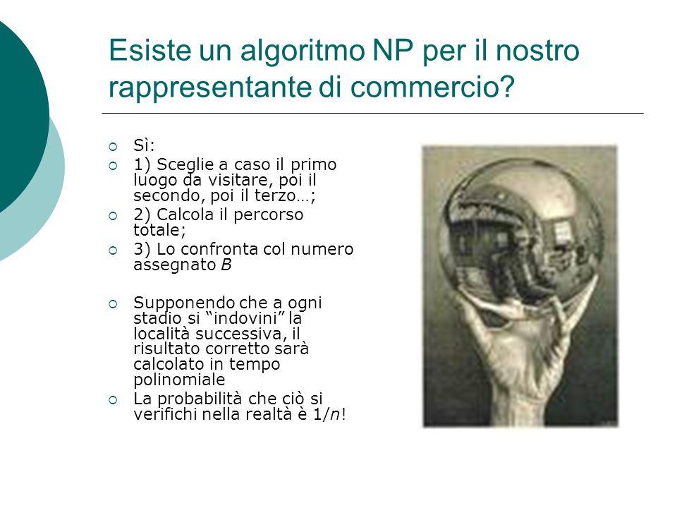 Esiste un algoritmo NP per il nostro rappresentante di commercio