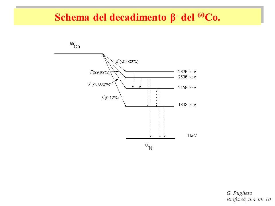 Schema del decadimento β- del 60Co.