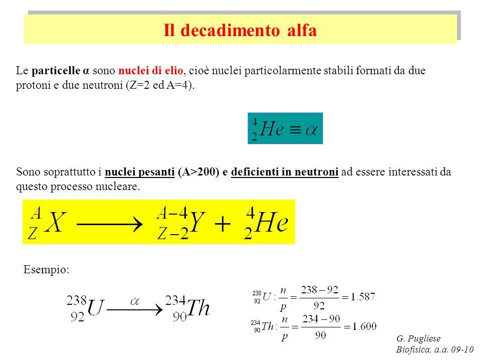 Il decadimento alfa Le particelle α sono nuclei di elio, cioè nuclei particolarmente stabili formati da due protoni e due neutroni (Z=2 ed A=4).