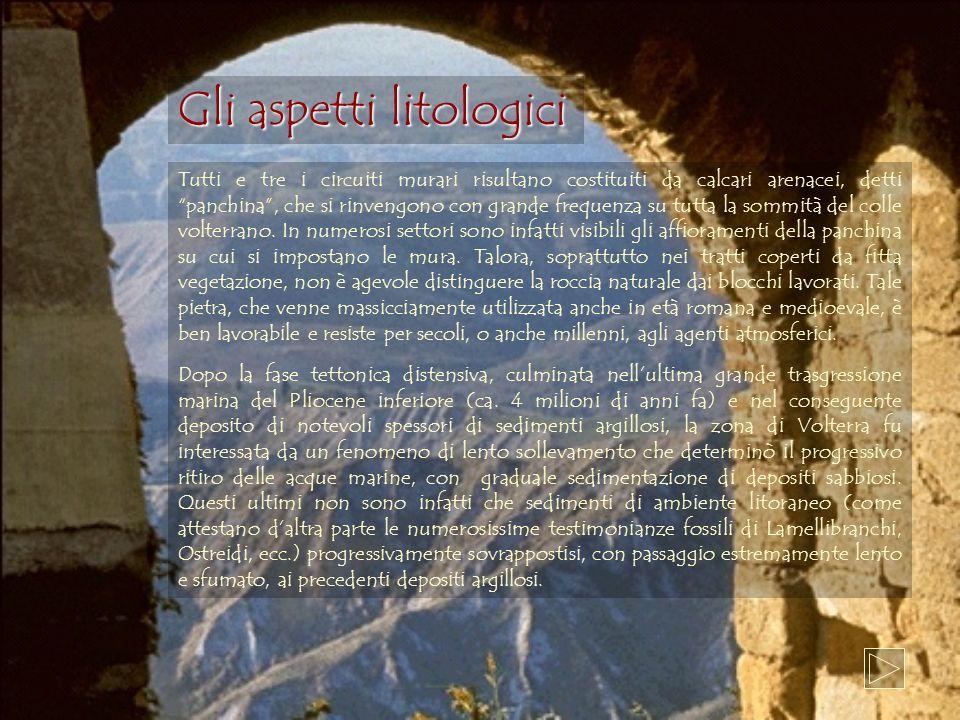 Gli aspetti litologici
