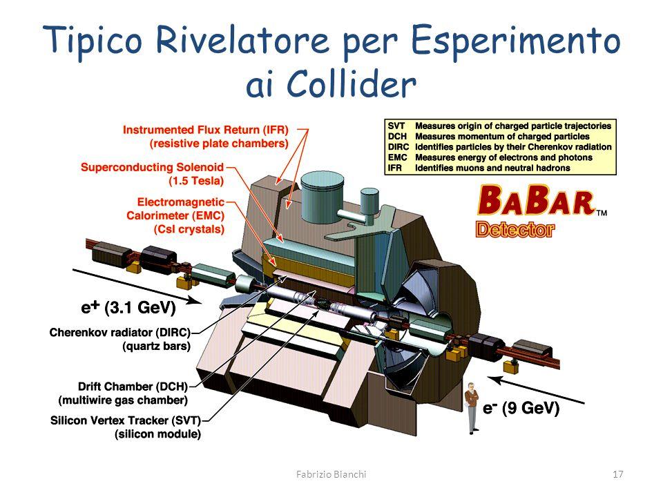 Tipico Rivelatore per Esperimento ai Collider