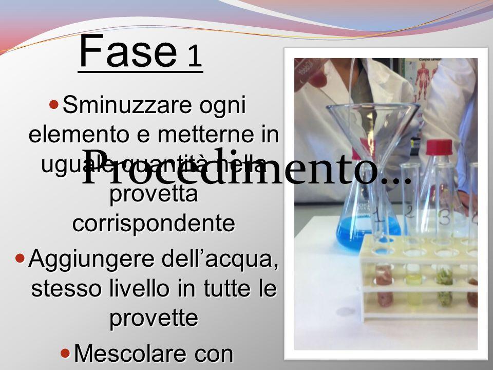 Fase 1 Sminuzzare ogni elemento e metterne in uguale quantità nella provetta corrispondente.