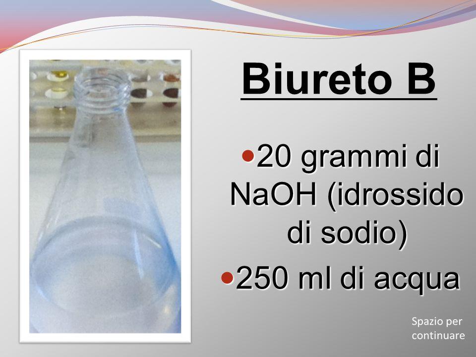 20 grammi di NaOH (idrossido di sodio)