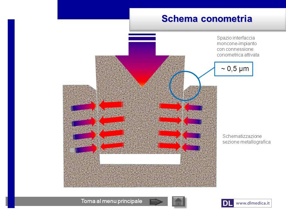 Schema conometria ~ 0,5 µm Torna al menu principale