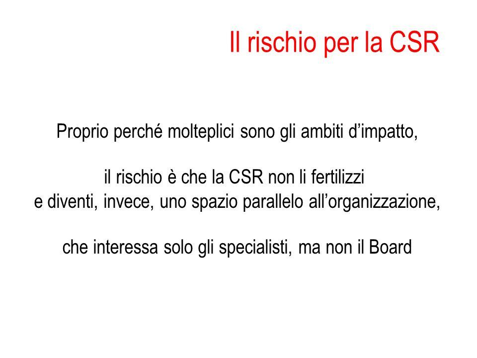 Il rischio per la CSR Proprio perché molteplici sono gli ambiti d'impatto, il rischio è che la CSR non li fertilizzi.