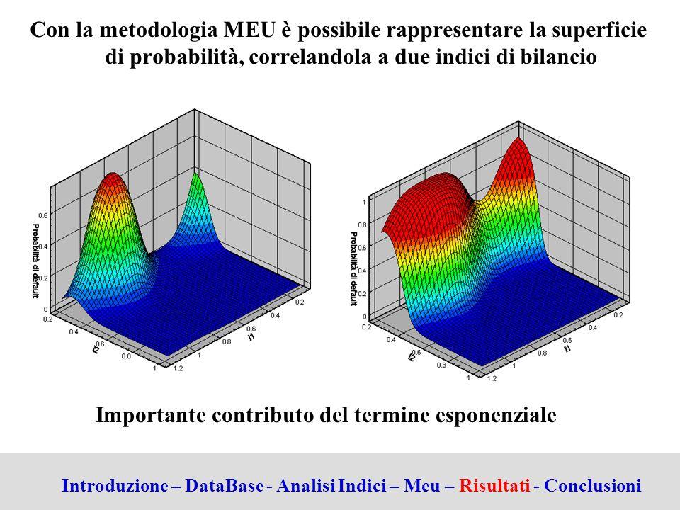 Importante contributo del termine esponenziale